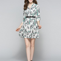 Chiffon A-line One-piece Dress without belt printed floral Sold By PC
