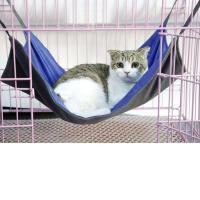 Nylon Cesta de la seguridad del animal doméstico,  Nylon, teñido de manera simple, Sólido, más colores para elegir,  Conjunto